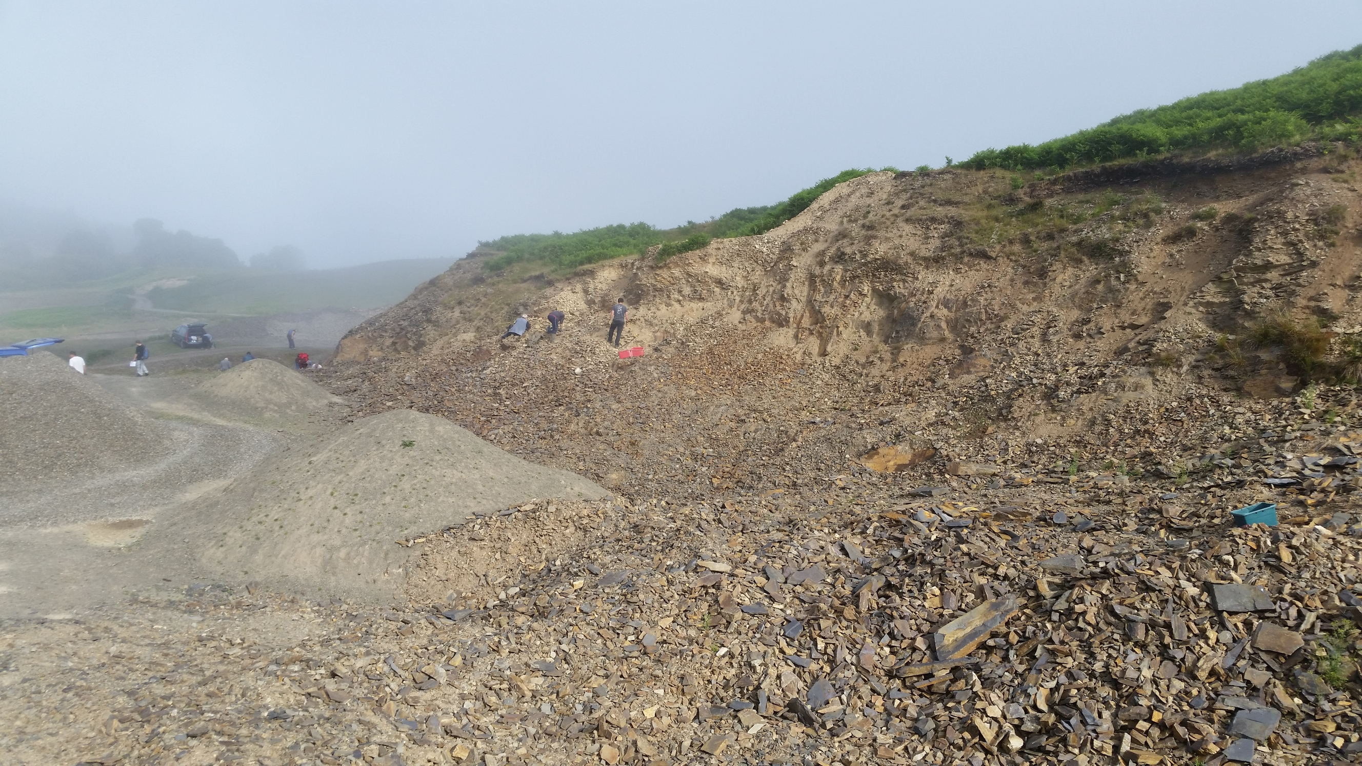 Upper Gilwern is a private quarry specially managed for fossil collectors, you will need to book in advance and pay a fee to the land owner.